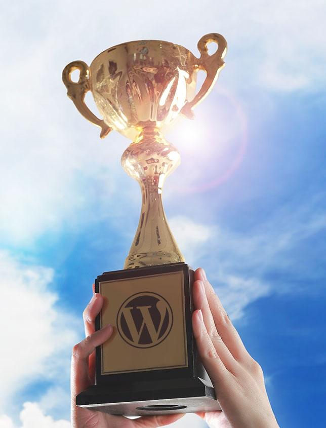 WordPress überzeugt